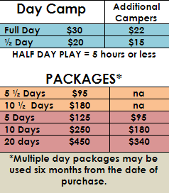 Dog-Camp-price-and-info-sheet-for-clients---Google-Docs.png