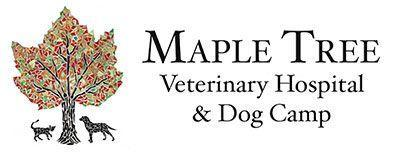 Maple Tree Veterinary Hospital & Dog Camp logo